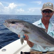 Amberjack on Popper