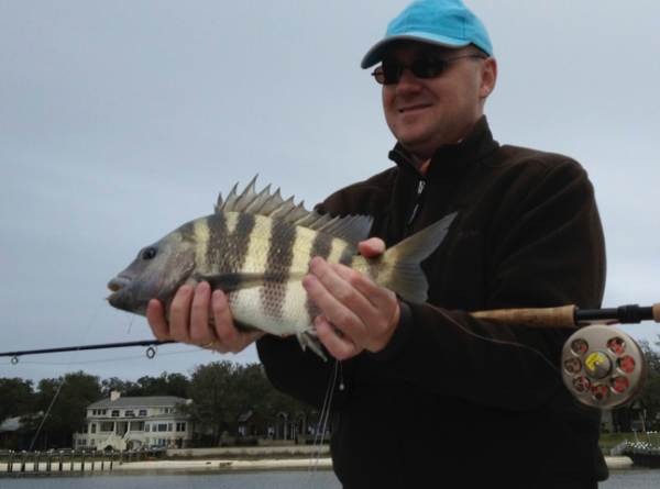 Sheepshead and Sibbi