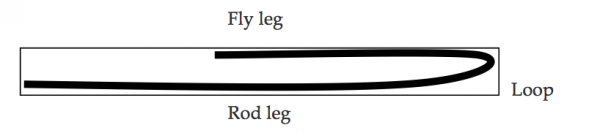 The loop, rod leg and fly leg
