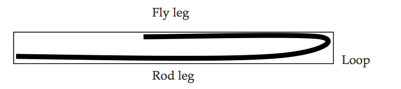 The loop, rod leg and fly leg