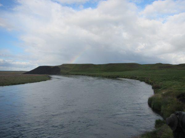 Dýjanesstrengur og -breiða (#65,64)