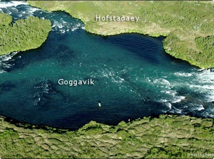 Hofstaðaeyja - Goggavik
